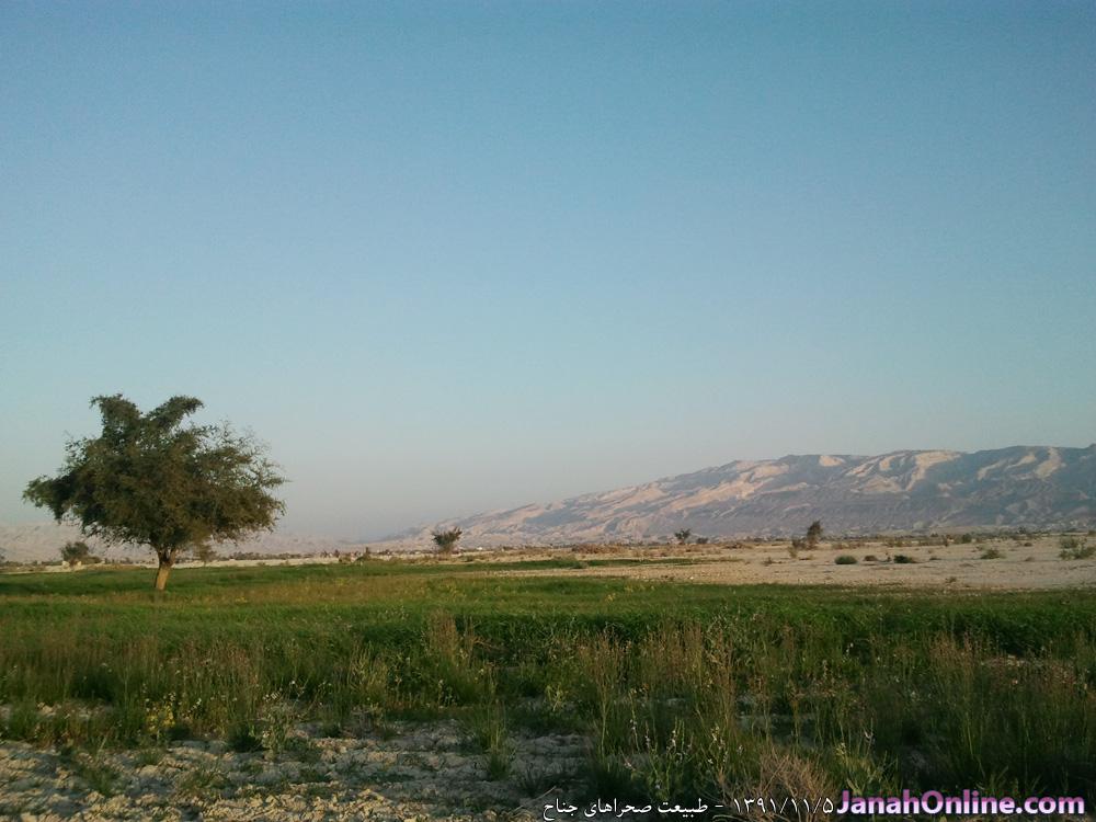 مجموعه عکس ها از طبیعت جناح و منطقه ( بهمن ماه ۹۱ )